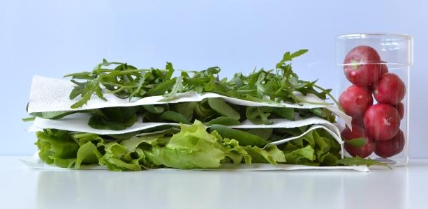 ulozeny salat zm