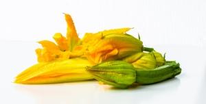 Cuketové kvety = chrumkavá pochúťka